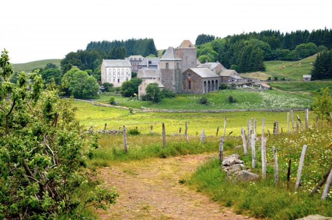 aveyron aubrac - Photo